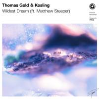 Thomas Gold & Kosling ft. Matthew Steeper - Wildest Dream artwork