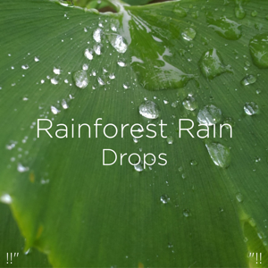 "Rain Sounds & Rain for Deep Sleep - !!"" Rainforest Rain Drops ""!!"