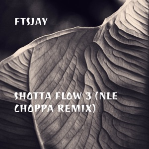 FTSJay - Shotta Flow 3