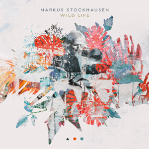 Markus Stockhausen - Moonlight in Your Face