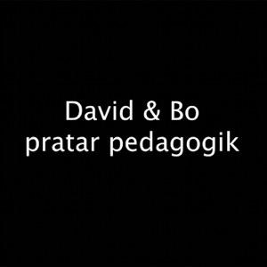 David & Bo Pratar Pedagogik