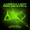 Ambient Light Orchestra - Idontwannabeyouanymore