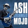Ash Grunwald - Ain't My Problem (feat. The Teskey Brothers) artwork