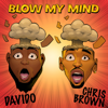 Davido & Chris Brown - Blow My Mind artwork