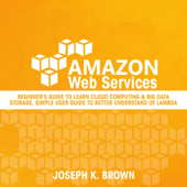 Amazon Web Services: Beginner's Guide to Learn Cloud Computing & Big Data Storage, Simple User Guide to Better Understand of Lambda (Unabridged)