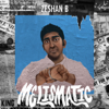 Zeshan B - Melismatic  artwork