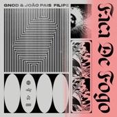 Gnod - Faca De Ar (feat. João Pais Filipe)