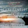 Buddy Levy - Labyrinth of Ice  artwork