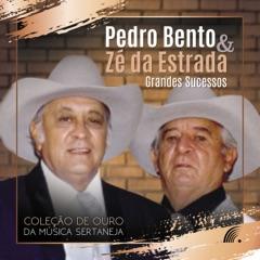 Grandes Sucessos - Coleção de Ouro da Música Sertaneja