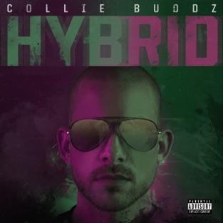 Collie Buddz - Hybrid m4a