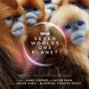 Seven Worlds One Planet (Original Television Soundtrack), Hans Zimmer & Jacob Shea