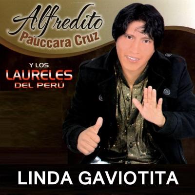 Linda Gaviotita - Alfredito Pauccara Cruz