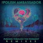 The Polish Ambassador - Let the Rhythm Just (Mr. Rogers Remix) [feat. Mr Lif & Ayla Nereo]