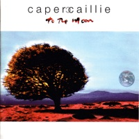 To the Moon by Capercaillie on Apple Music