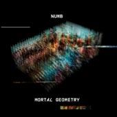 Numb - When Gravity Fails