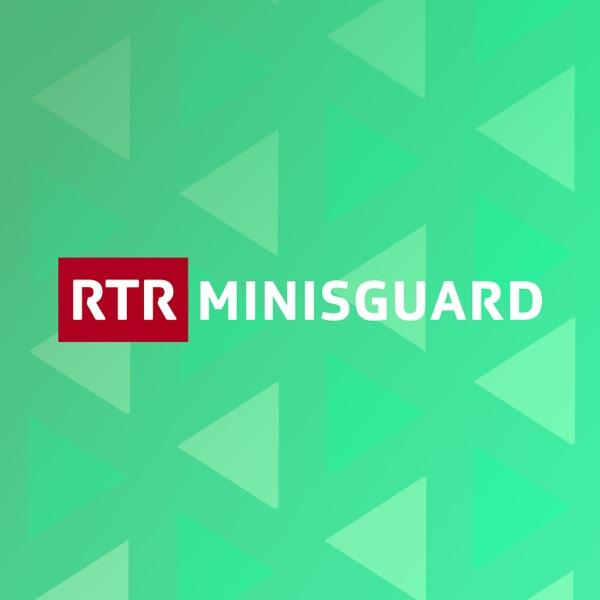 Minisguard