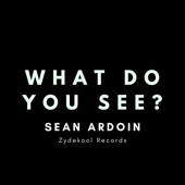 Sean Ardoin - What Do You See