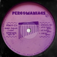 Something New (Joyce Muniz rmx) - RYBO - ANABEL ENGLUND
