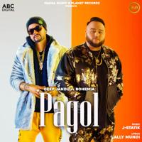 Pagol (feat. Bohemia)