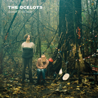 The Ocelots - Started to Wonder artwork