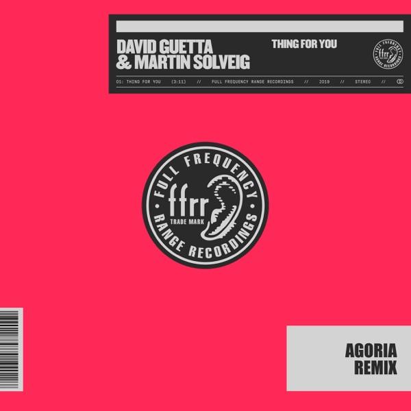 David Guetta & Martin Solveig - Thing For You (Agoria Remix)