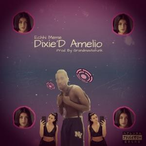 Echhi Meme - Dixie 'D Amelio