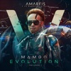Mambo Evolution, Vol. 1