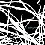 Argus Quartet - Respiri