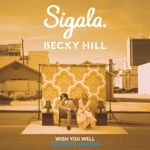 Wish You Well (Acoustic) - Single
