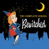 Bewitched: The Complete Series image