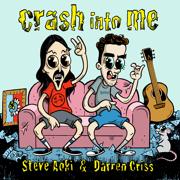 Crash into Me - Steve Aoki & Darren Criss - Steve Aoki & Darren Criss