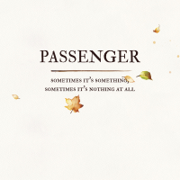 Passenger - Sometimes It's Something, Sometimes It's Nothing at All artwork
