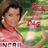 Ingrii - Pluk De Dag artwork