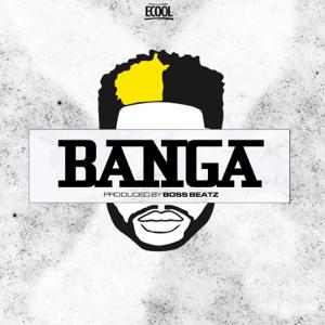 Ecool - Banga
