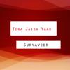 Suryaveer - Tera Jaisa Yaar artwork