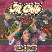 Lila Downs - Clandestino