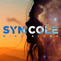 Mind Blown (Record Mix) - SYN COLE