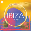 Verschillende artiesten - Ibiza 2020 kunstwerk