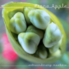 Fiona Apple - Extraordinary Machine  artwork