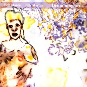 Bob Moses/Billy Martin - Mozamba
