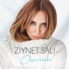 Ziynet Sali - Ömrüm artwork