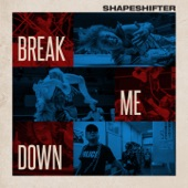 Shapeshifter - Break Me Down (Flowidus Remix)