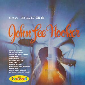 ジョン・リー・フッカー - Gotta Boogie - The Modern Recordings 1948-55