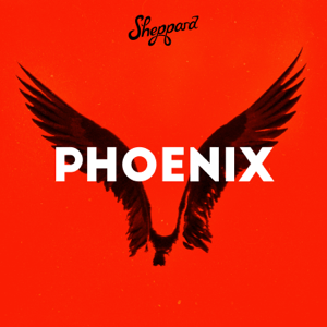 Sheppard - Phoenix