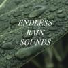 Endless Rain Sounds