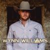 Wynn Williams - Wynn Williams  artwork