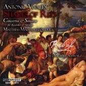 Matthias Maute - Concerto in C Minor, RV 441: I. Allegro non molto