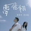 夢飛翔 劇集 那些我愛過的人 插曲 - 戴祖儀 & 謝東閔 mp3