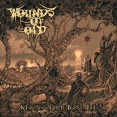 Wounds of Old - For Wisdom & Eternity