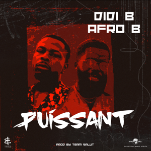 Didi B & Afro B - Puissant